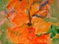 Оранжевый гладиолус
